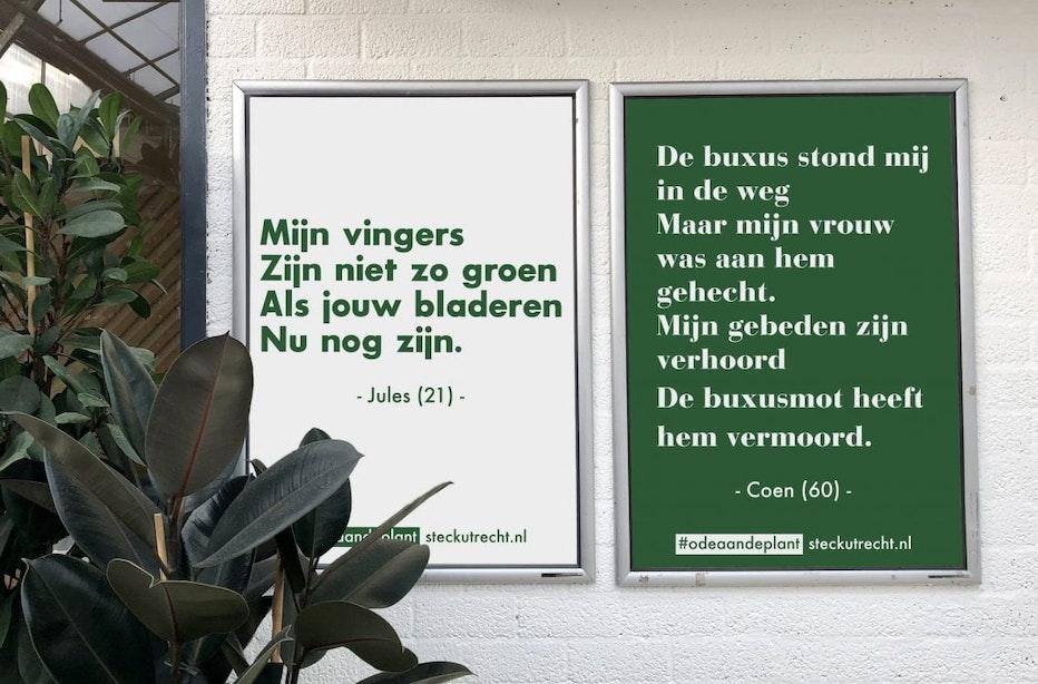 Steck is op zoek naar groene anekdotes om Utrecht mee te versieren
