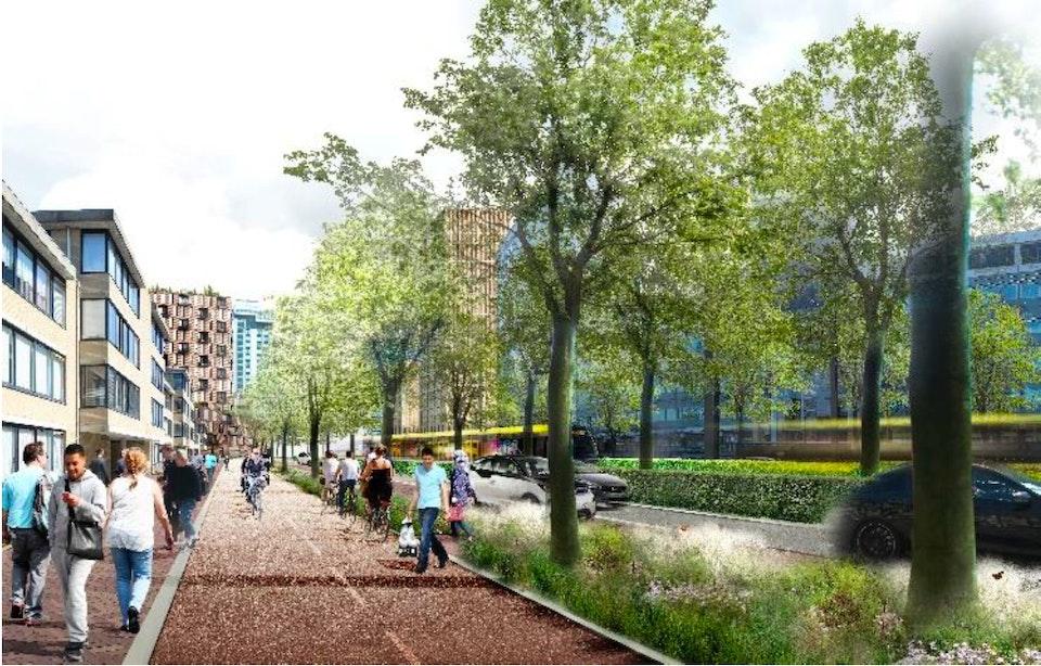 Dit zijn de plannen voor de Graadt van Roggenweg; Minder ruimte voor auto's en maximumsnelheid naar 30 km/h