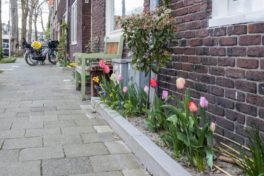Utrechters die geveltuin aan willen leggen kunnen nu gratis bakfiets lenen en potgrond krijgen