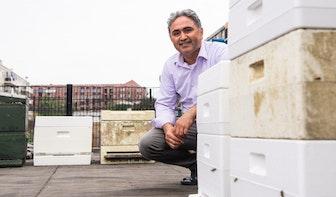 Ahmet heeft succes met ruim 200.000 bijen in Kanaleneiland