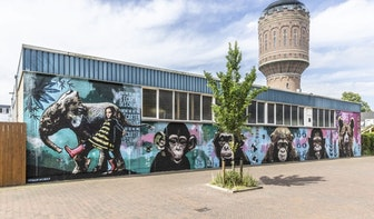 Nieuwe muurschildering op buitenmuur LE:EN doet denken aan werk van Banksy