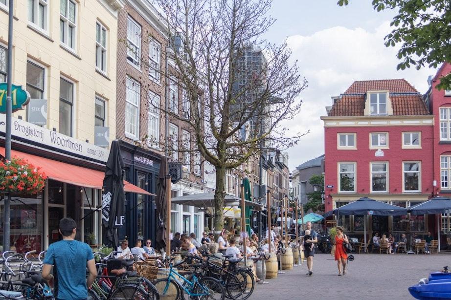 Gemeente Utrecht kapt met spoed kastanjeboom op de Neude