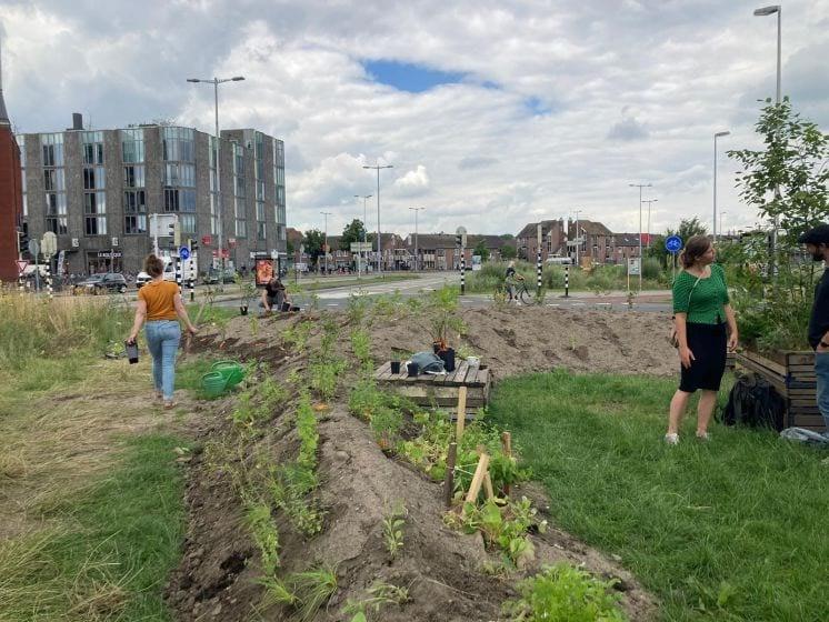 Buurtbewoners toveren Westplein in Utrecht om in wilde bloemenweide