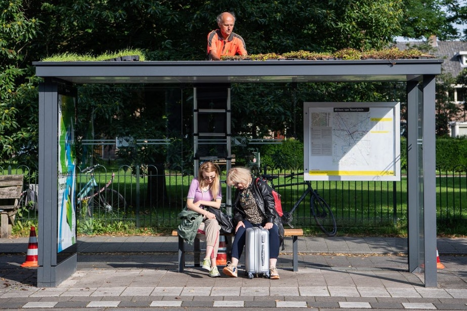 Populaire groene bushokjes in Utrecht worden mogelijk nog groener