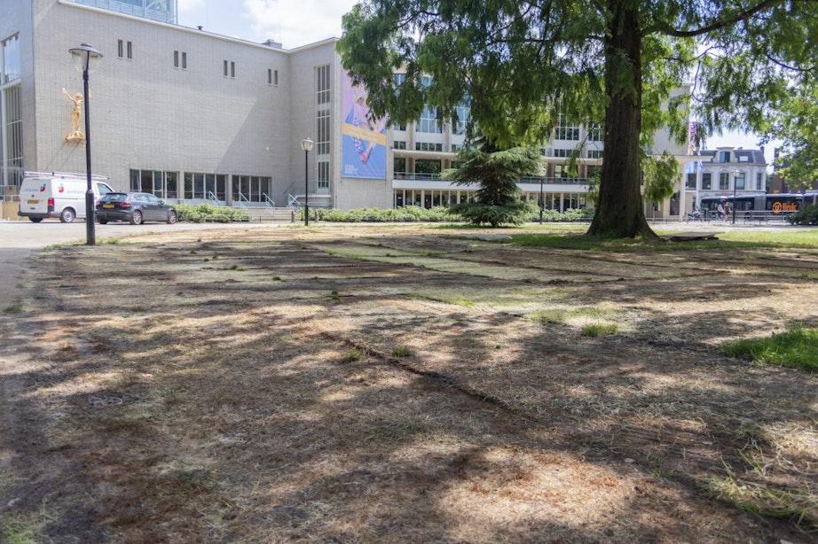 Dood gras na evenement in de Utrechtse binnenstad, wie herstelt dat?