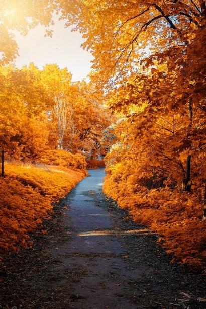 Is er ook seizoenswerk in de herfst en winter?